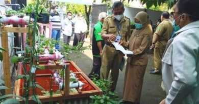Penjurian Lomba Urban Farming Tingkat OPD di Kantor Kelurahan Sukun